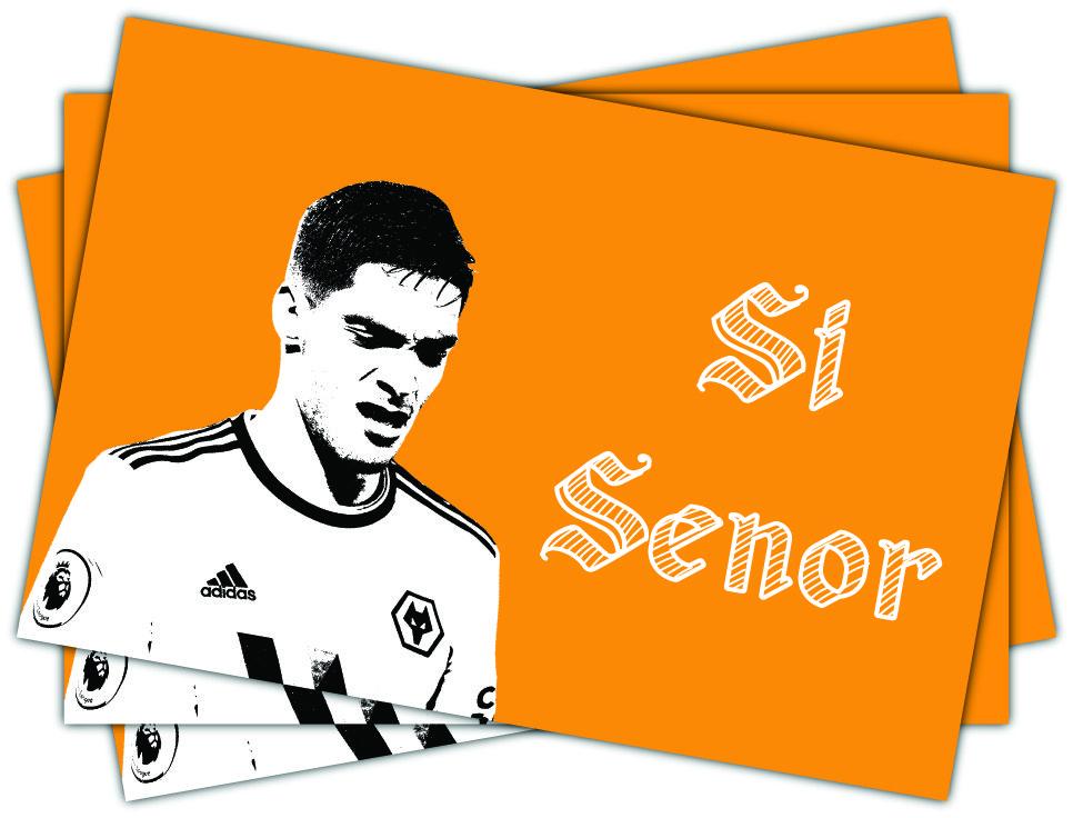 Wolverhampton Wanderers Si Senor