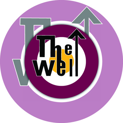 Motherwell FC The Well
